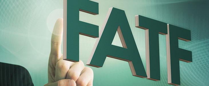دولت برای اجرای توافقFATF  نیازمند مصوبه مجلس است/ تشریفات قانونی برجام باید برای FATF نیز اجرا شود/ مجلس موظف است توافق FATF را بررسی کند